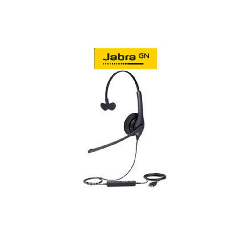 Jabra Biz1100 Mono USB