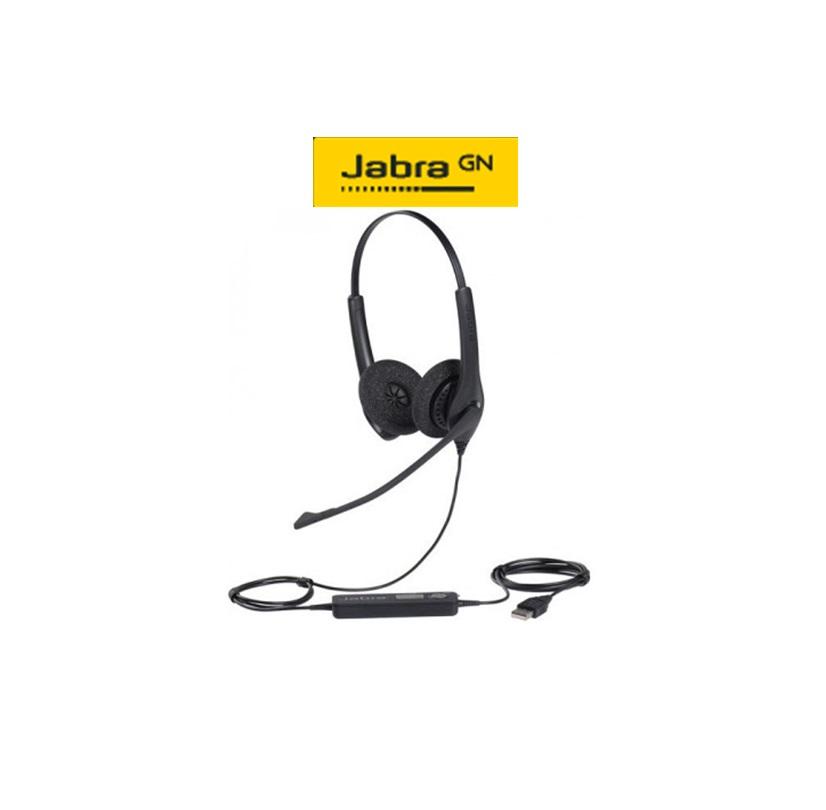 Jabra Biz1100 Duo USB